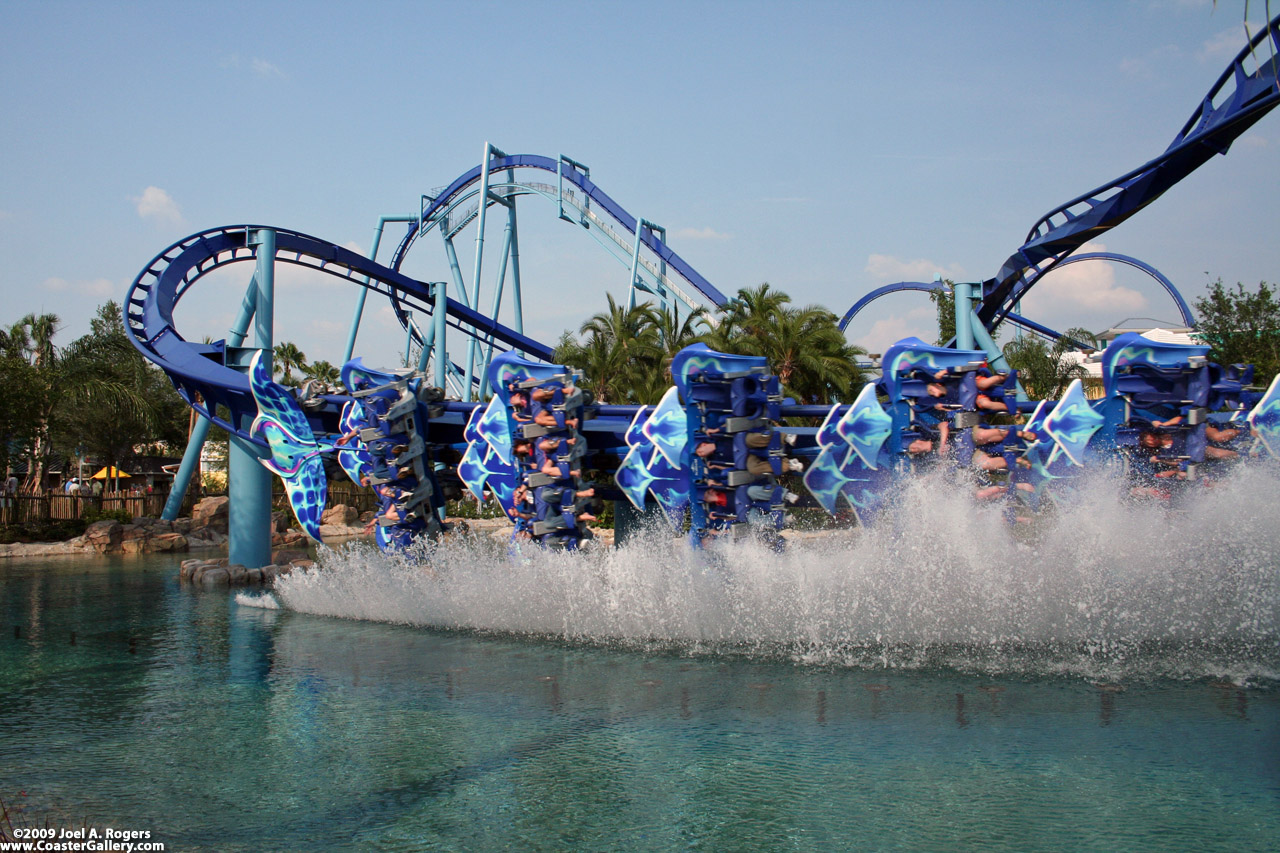 Manta, Sea World